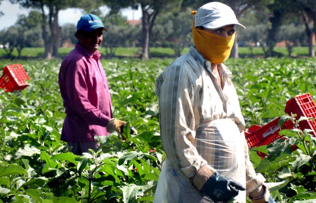"""il decreto """"Cura Italia"""" liberi lavoratori agricoli"""